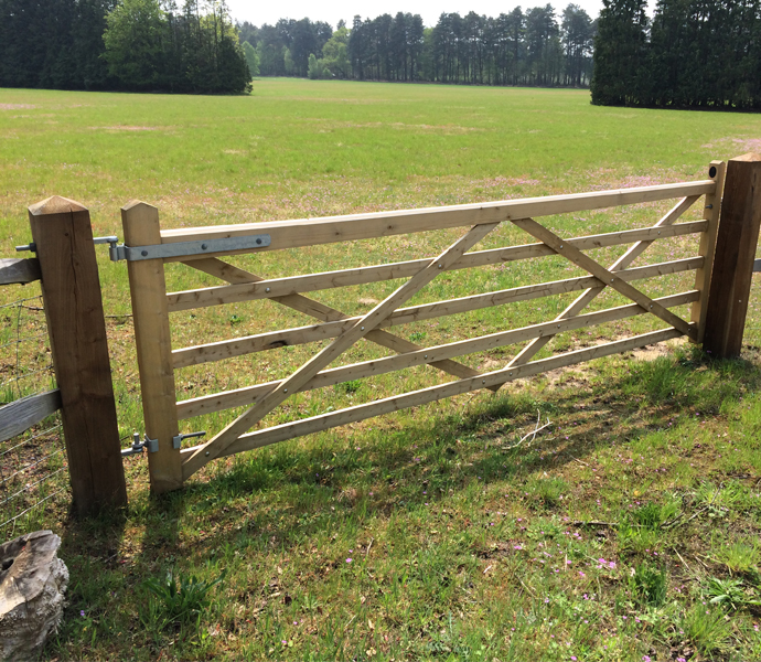 Field-Gates-Category-Picture